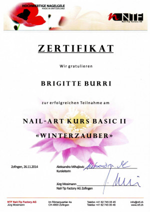 2014 - Nail Art Kurs Basic II Winterzauber; ?>